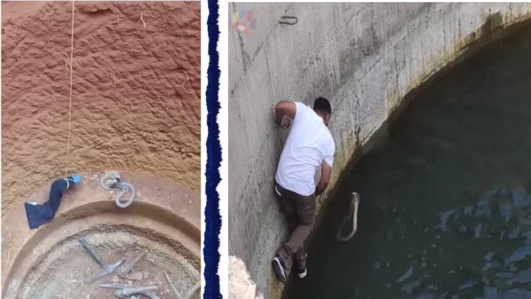 Men risk life to save Snake in Well- Video goes viral!